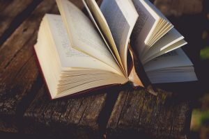 books 13