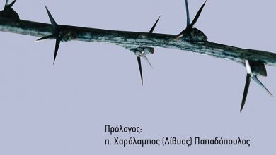 Photo of ΣΤΟ ΠΛΑΪ ΕΝΟΣ ΑΘΩΟΥ